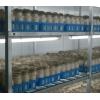 蟹味菇工厂化