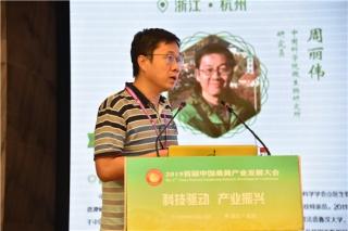 周丽伟:桑黄名称亟待规范 用正确种名发表研究成果 ()