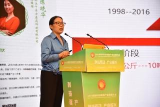 陳曉華:中國桑黃產業的發展需要抱團協同推進