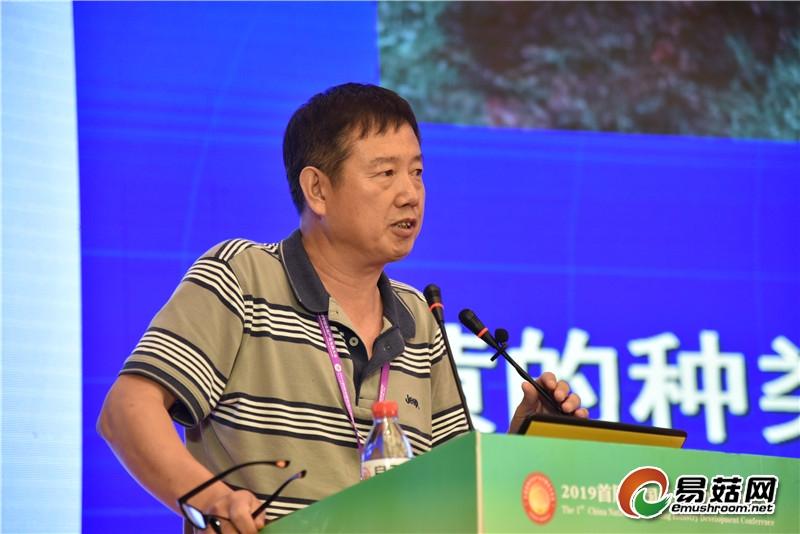 戴玉成:桑黄种类和系统发育研究