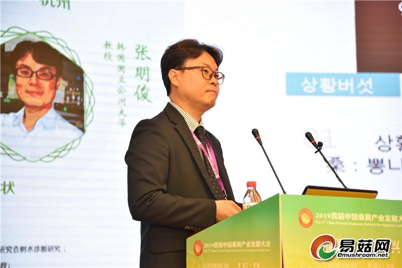 张明俊 :韩国桑黄的研究现状