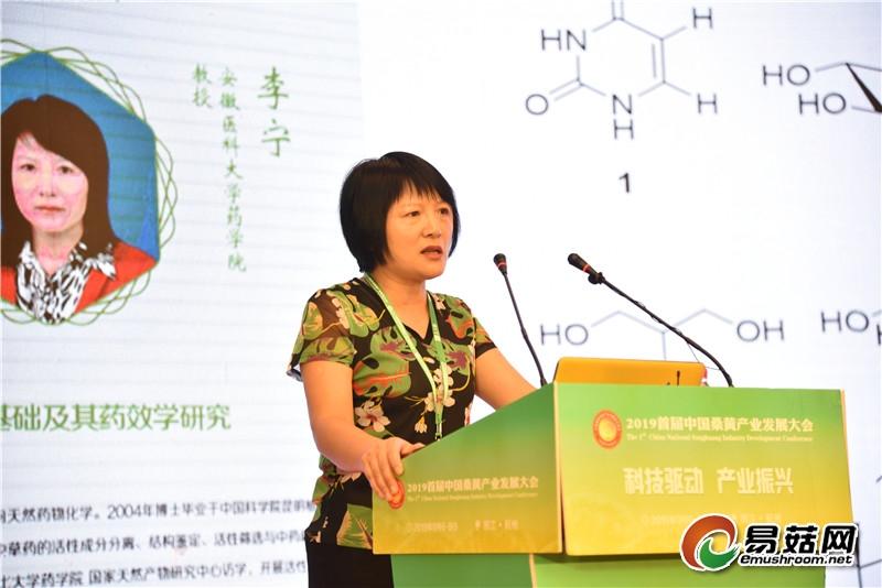 李 宁:桑黄抗肿瘤的物质基础及其药效学研究