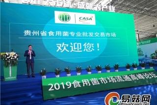 创建大市场 成就大产业:2019食用菌市场流通高峰论坛在贵阳举行 ()