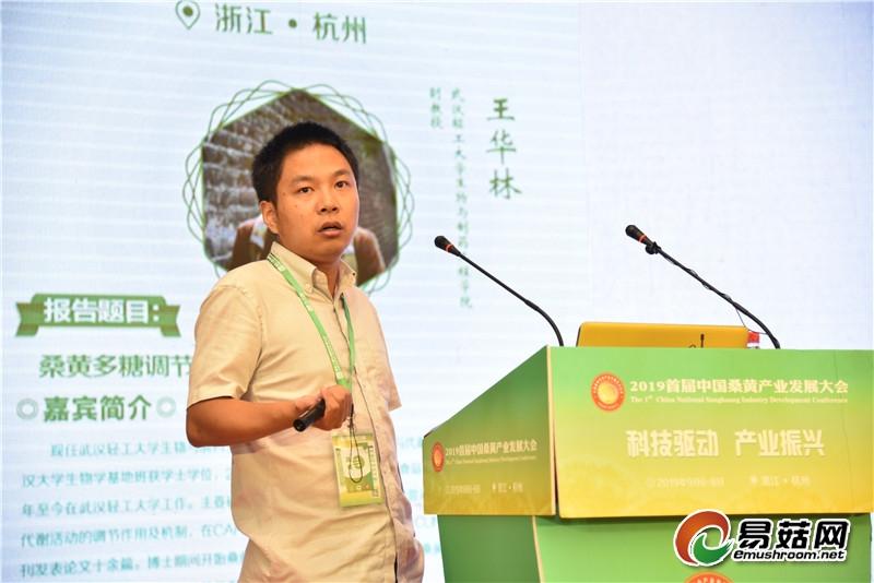 王华林:桑黄多糖调节糖代谢的研究发展