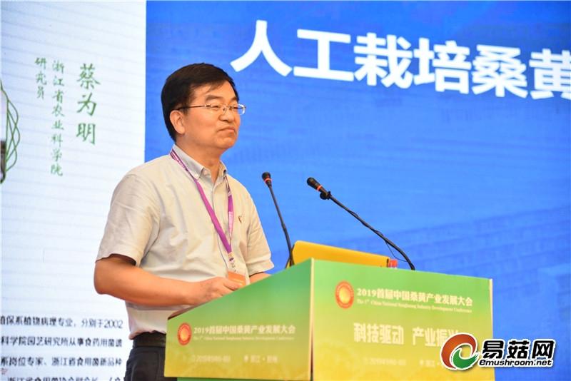 蔡为明:人工栽培桑黄及其活性成分分析