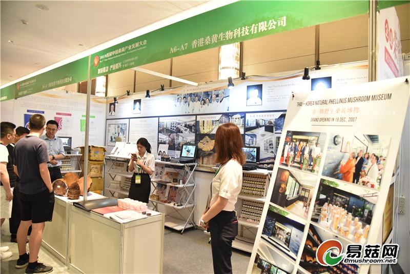 香港桑黄生物科技有限公司