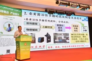 闫景坤:深入桑黄基础研究 实现产业振兴和可持续发展 ()