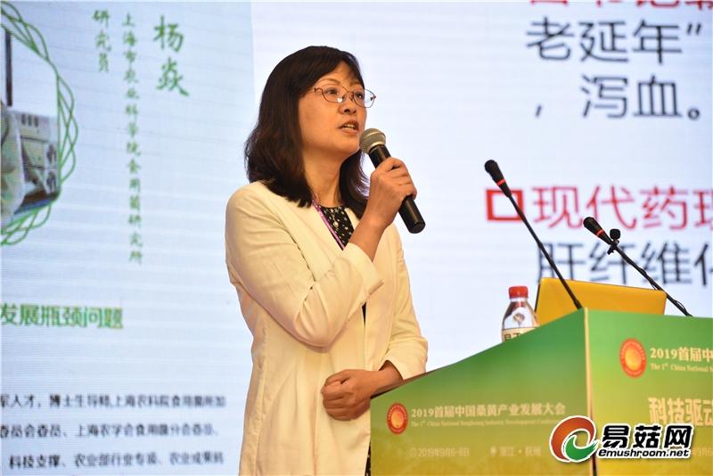 杨 焱:桑黄的现代科学研究进展和产业发展瓶颈问题