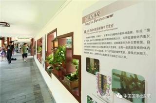 """中国首次""""大型真菌艺术画展""""在深圳仙湖植物园举办 ()"""