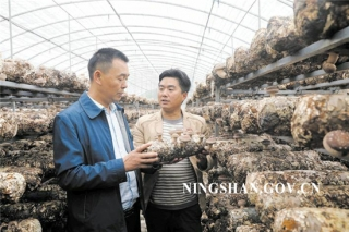 宁陕皇冠镇发展食用菌产业 助农增收 ()