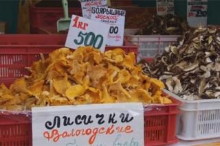 俄罗斯圣彼得堡举办蘑菇节