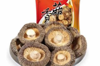 2019湖北·随州国际香菇产业博览会会徽(logo)、吉祥物征集活动