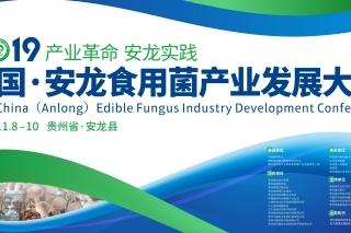 """2019中国·安龙食用菌产业发展大会""""香菇行业最具网络影响力产区""""、"""""""