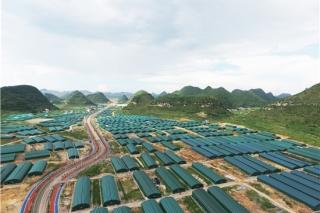 2019中國·貴州食用菌產業發展大會將于11月開幕 ()