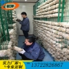 河北食用菌网格网架 定制各种平菇出菇架 养殖蘑菇网格网片