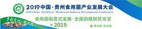 2019中國·安龍食用菌產業發展大會