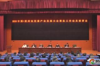2019中國·貴州食用菌產業發展大會籌備工作動員部署會召開 ()