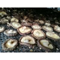 随州香菇烘干机  随州香菇烘干设备  随州香菇烘房厂家直销