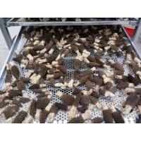 高效节能环保羊肚菌空气能烘干机厂家