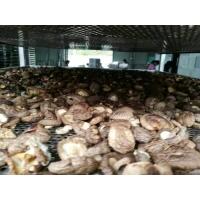 香菇空气能烘干机公司  香菇空气能烘干机厂家