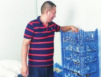 專合社種草菇 熱銷川渝市場 ()