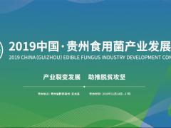2019中国·贵州食用菌产业发展大会简要日程