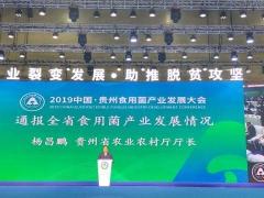 贵州日报:贵州省今年底将进入全国食用菌产业第一梯队 全年种植