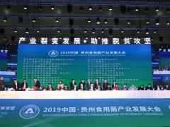 贵州省食用菌产业招商推介会暨签约仪式 (15)