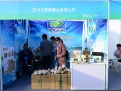 A39:贵州乌蒙腾菌业有限公司 (3)