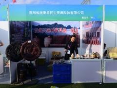 A41:贵州省施秉县民生天麻科技有限公司 (4)