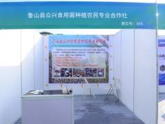 A95:鲁山县众兴食用菌种植农民专业合作社 (2)