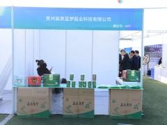 A97:贵州高原蓝梦菇业科技有限公司 (3)