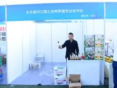 B36:大方縣對江鎮三合種養殖專業合作社 (2)