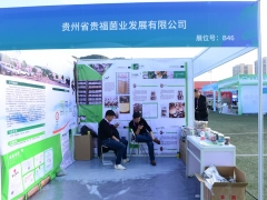 B46:贵州省贵福菌业发展有限公司 (3)