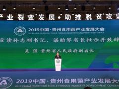 2019中国·贵州食用菌产业