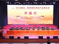 2019湖北·隨州國際香菇產業博覽會開幕