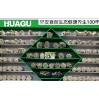 杏鮑菇,金針菇工廠化