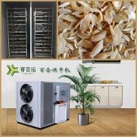 自动化侧吹式空气能百合烘干机