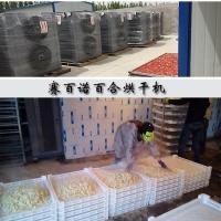 农产品专用百合烘干机