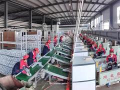 水城县:打通上中下游产业链 促进食用菌产业健康发展