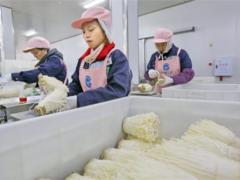 华绿生物创业板IPO  曾于2017年新三板退市 ()