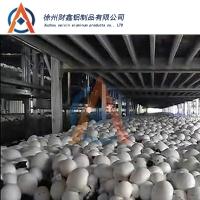 厂家供应蘑菇种植架 食用菌铝种植架定制 双孢菇铝合金种植架