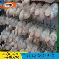 杏鲍菇出菇架厂家 定做猴头菇出菇房网架 批发平菇立体架子