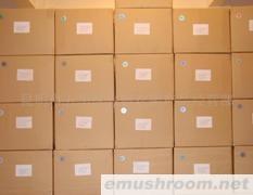 供应野生菌包装  野生菌