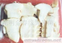 供应云南野山珍,速冻老人头,野生菌,食用菌.
