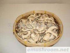 供应双孢蘑菇片