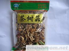 供应食用菌/短脚茶树菇