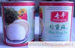 供应白灵菇罐头