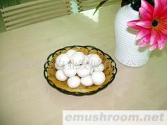 供应鲜菇(双孢菇)食用菌