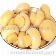 供应蘑菇罐头(图)